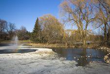 Free Sunny Winter Morning Stock Photos - 4695293