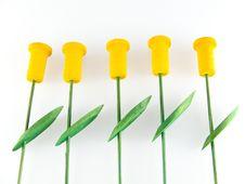 Free Yellow Tulips Stock Photos - 4695683
