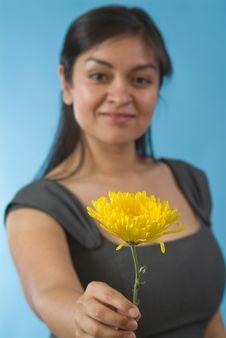 Free Flower Stock Photo - 4696570
