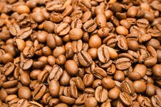 Free Textures - Coffee Beans (Top View) Royalty Free Stock Image - 472016