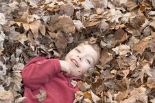 Free Boy In Leaves Stock Image - 476431