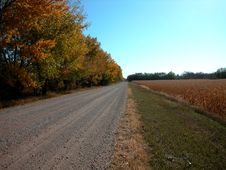 Free Empty Road Stock Photography - 478172