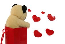 Free Loving Bear Royalty Free Stock Photos - 479888