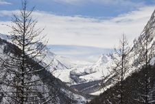 Free Val Ferret Trip Royalty Free Stock Image - 4700386