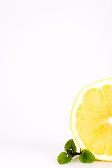 Free Sliced Grapefruit With Fresh Balm, Isolated Stock Photos - 4702503
