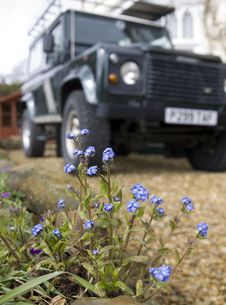 Free 4x4 With Flowers Royalty Free Stock Photo - 4704215