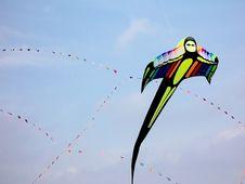 Free The Kite Royalty Free Stock Photos - 4706838