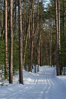 Free Happy Trails Stock Photos - 4707013