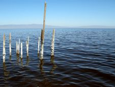 Free Salton Sea Stock Photography - 4707552