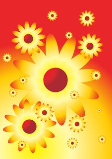 Solar Flowers Royalty Free Stock Images