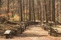 Free Split Rail Fenced Trail Stock Photo - 4712790
