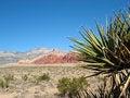 Free Red Rock Canyon, Nevada Stock Photo - 4713940