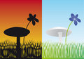 Free Flower And Mushroom Stock Image - 4714141