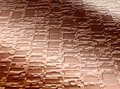 Free Texture Path Stock Photography - 4717412