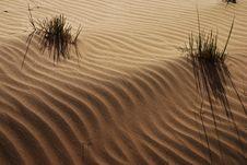 Free Desert Stock Image - 4711951