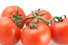 Free Tomatoes UpClose Stock Photography - 4712272