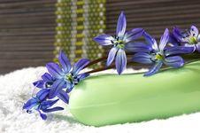 Free Spa Concept Stock Photos - 4713893
