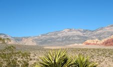 Free Red Rock Canyon, Nevada Royalty Free Stock Photo - 4713955