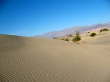 Free Sand Dunes, Death Valley, California Royalty Free Stock Photography - 4714037