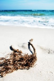 Free Old Rope At The Beach Stock Image - 4715021