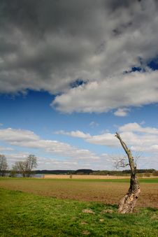 Free Sky And Clouds Over Field Stock Photography - 4715522