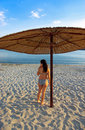 Free Pregnant Woman From Behind On Beach Stock Image - 4727921