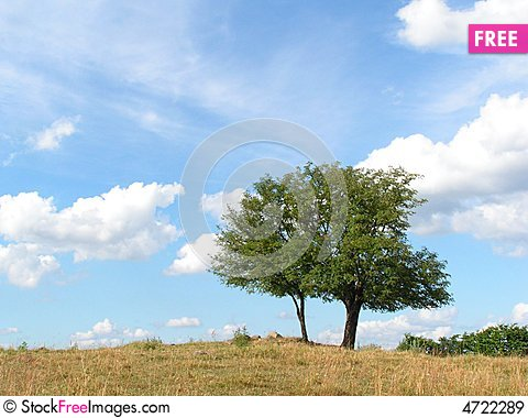 Free Landscape In Northern Poland Royalty Free Stock Images - 4722289