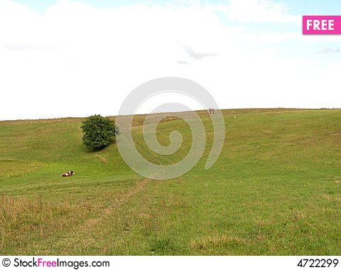 Free Landscape In Northern Poland Royalty Free Stock Images - 4722299