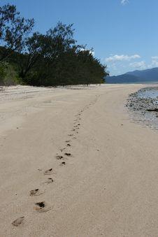 Free Footprints Royalty Free Stock Image - 4720406