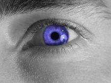 Free Blue Eye Royalty Free Stock Photo - 4720475