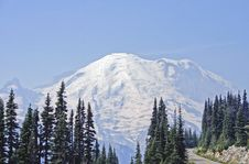 Free Mt Rainier National Park Stock Photography - 4723472