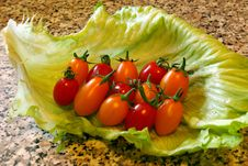 Free Sardinian Tomatoes Royalty Free Stock Images - 4723529
