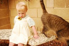 Young Girl With Cat On Bench Royalty Free Stock Image
