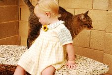 Young Girl With Cat Royalty Free Stock Photos