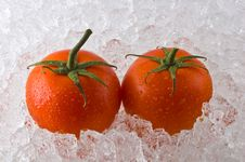 Free Red Ripe Tomatoes On Bed Of Cracked Ice Royalty Free Stock Photo - 4726445