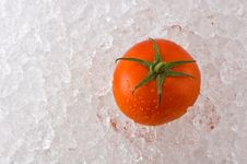 Free A Red Ripe Tomato On A Bed Of Ice Stock Photo - 4726450