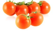 Free Nice Fresh Tomatoes Royalty Free Stock Photo - 4728545