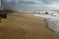 Free Moody Beach Royalty Free Stock Image - 47235066