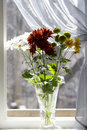Free Bouquet Of Multicolored Chamomiles In Sunshine Stock Images - 4731314