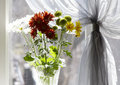 Free Bouquet Of Multicolored Chamomiles In Sunshine Stock Photos - 4731323