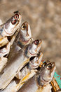 Free Grilled Fish At Marketplace Royalty Free Stock Photos - 4735858