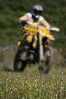 Free Endurocross Between Flowers Royalty Free Stock Images - 4731619