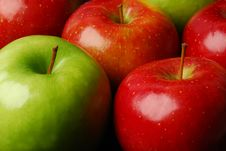 Free Apples Royalty Free Stock Photography - 4732847