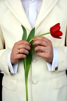 Free Man Holding Flowers Royalty Free Stock Images - 4733179