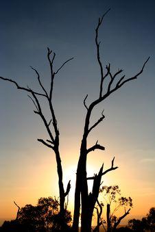 Free Sunset Stock Photos - 4737033