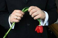 Free Man Holding Flowers Stock Photography - 4737632