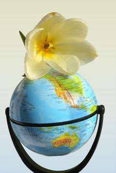 Free Peace On Earth Stock Image - 4737641