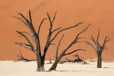 Free Dead Vlei Valley Stock Images - 4737774