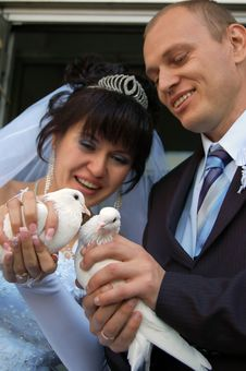 Free Newly Wedded Couple With Doves Stock Photography - 4738912