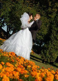 Newly Wedded Couple Royalty Free Stock Photo